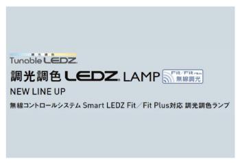 LEDZ LAMP